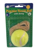 Practice Tennis Ball