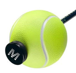 Ace Trainer Ball